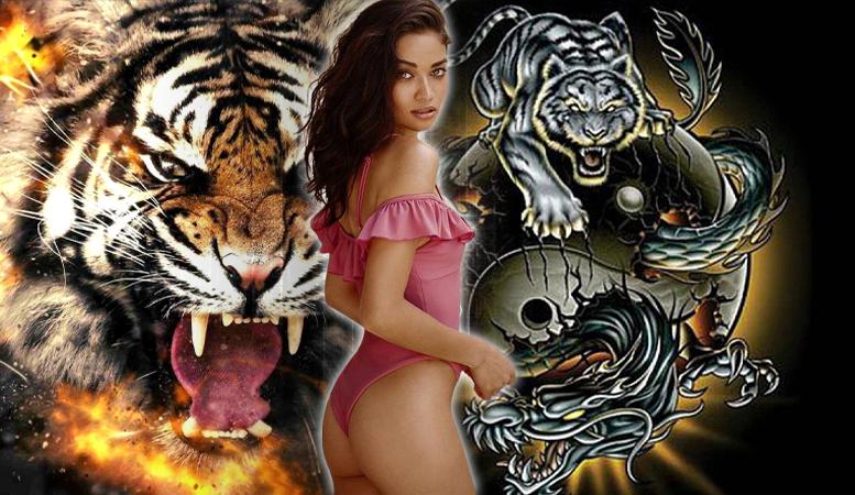 Taruhan-Dragon-Tiger-Permainan-Judi-Kartu-Terbaik